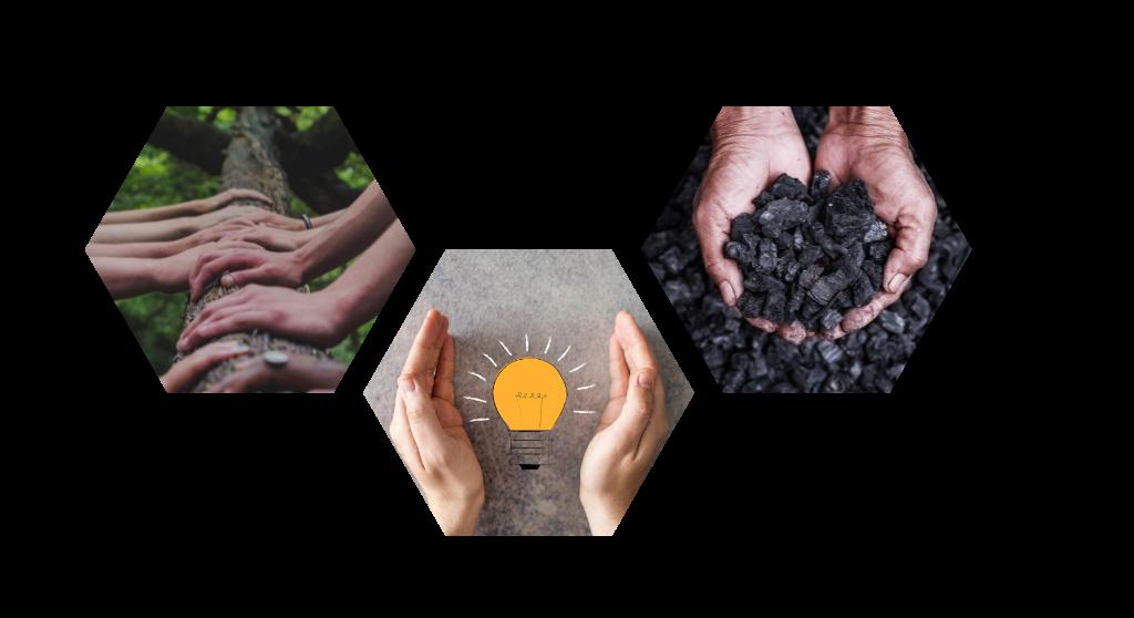 Grüner Impact: gemeinsam Strom und Biokohlenstoff für das Klima produzieren